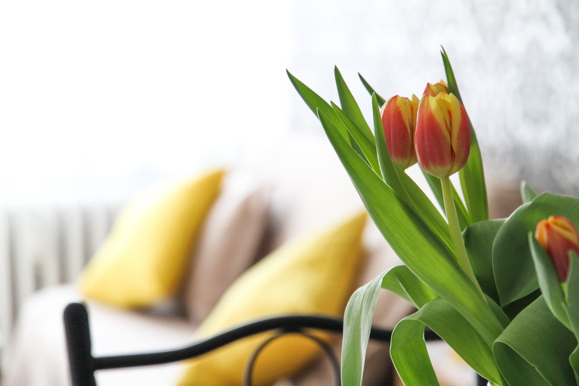 Confier la gestion locative à une agence immobilière